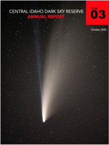 CIDSR 2020 Annual Report